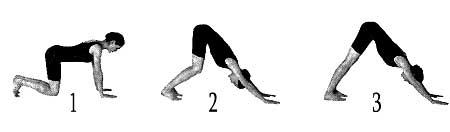 Posture : Adho mukha svana asana